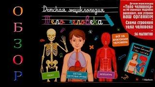 Детская Энциклопедия Тело Человека