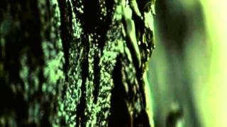 Волчья яма / Wolf Creek 2005 дублированный трейлер
