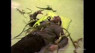 THE LOST WORLD: JURASSIC PARK Compy Attack