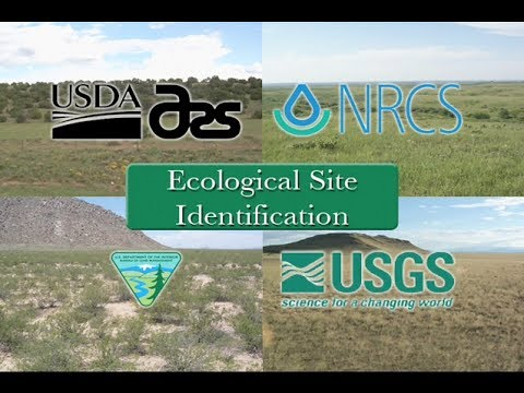 Ecological Site Identification