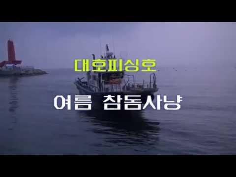 2014년8월 대호피싱참돔사냥