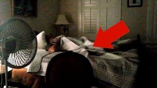 Top 5 Lugares Embrujados Donde Ocurrieron Fenómenos Paranormales