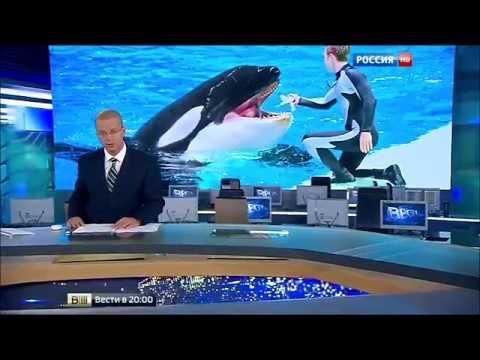 Страшная трагедия в Нижнем Новгороде  Новости России сегодня Мировые новости 05 08 2015
