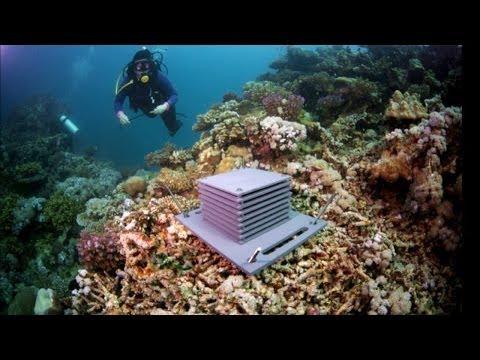 MarineGEO: Taking the Pulse of the Coastal Ocean