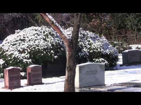 Hollywood Cemetery After First Winter