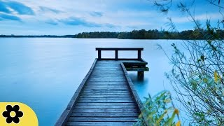 Meditation Healing Music Relaxation Music Chakra Relaxing Music for Stress Relief Relax 630C