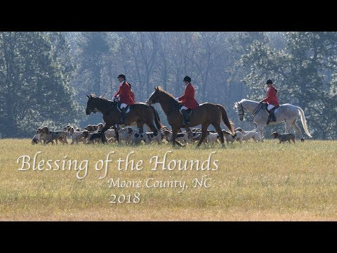 Blessing of the Hounds -Moore County, NC