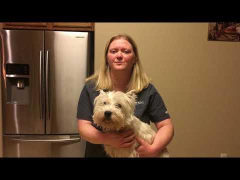 Cedar Valley College VTHT1301 AVMA Task Video Project Fall 2017