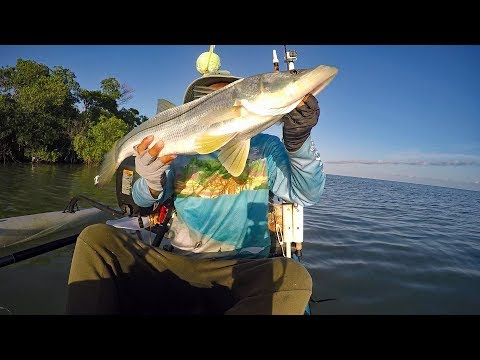 All About The Bait Snook Shirt Challenge. Win A Shirt.