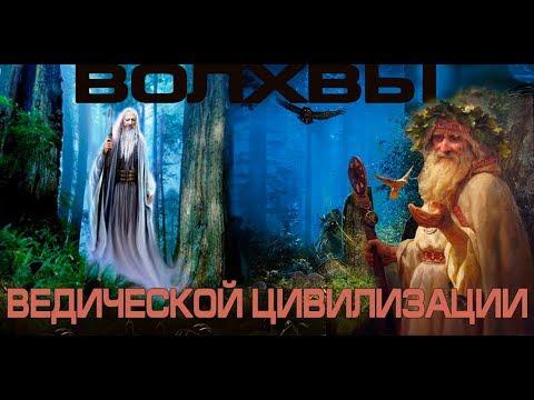 ВОЛХВЫ ВЕДИЧЕСКОЙ ЦИВИЛИЗАЦИИ возвращаются  Русь и Русский мир ОЛЕГ ПАНЬКОВ Целитель  Знахарь
