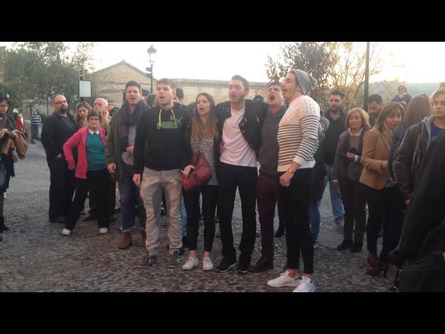 Jóvenes franceses cantan La Marsellesa tras el minuto de silencio en Toledo
