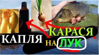 3 гр и Караси кружат у Крючка Сделай эту Рыболовную насадку Ароматизатор на рыбалку Линь Карп Клёв