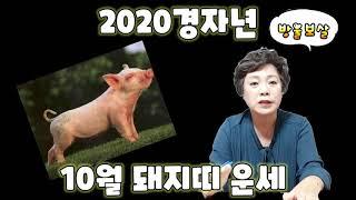 2020경자년 10월 돼지띠 운세입니다.