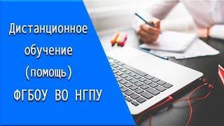 ФГБОУ ВО НГПУ: дистанционное обучение, личный кабинет, тесты.