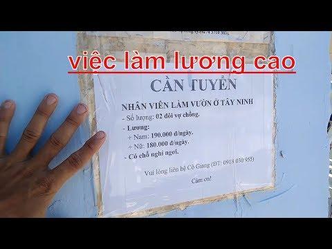 Xin Việc Làm 2020 L Thuận Giao Bình Dường