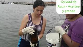 Monitoreo de Calidad de Agua en la Playa de Ancón (playa 18)