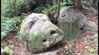 謎の人面石・古代人の遺跡か?