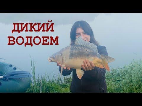 Секреты рыбалки на карпа. Ловля на диком водоеме