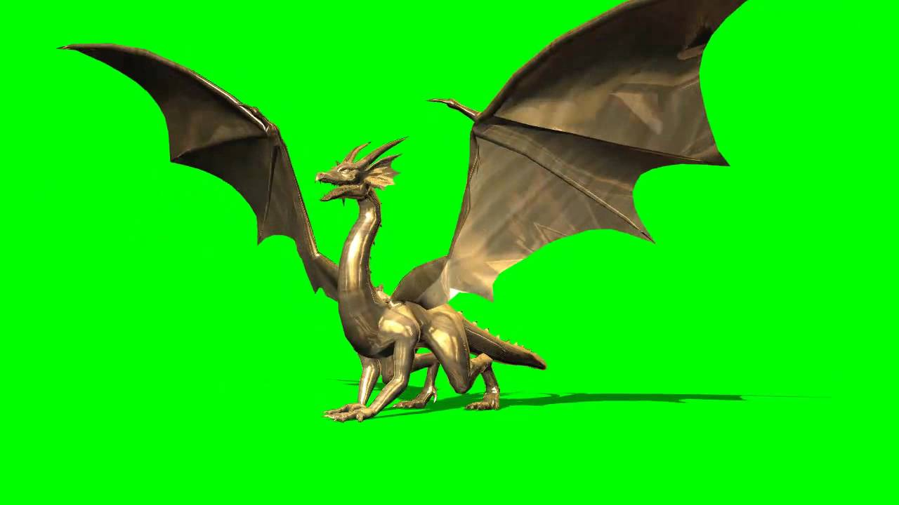 golden dragon with different movements - greenscreen effects - YouTube