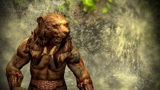 Path of Exile: Bear Helmet Skin