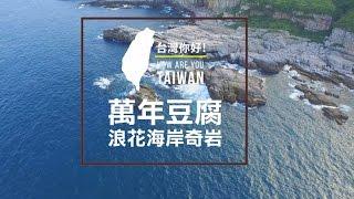 東北角龍洞空拍 HD 萬年豆腐岩【台灣,你好!】環島系列