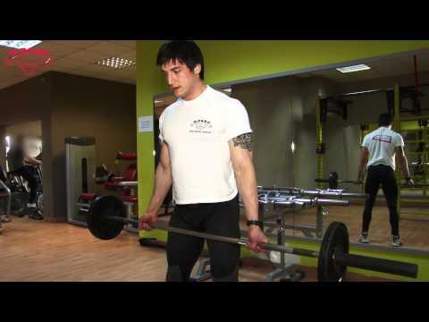 Тренировки за гръб