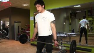 Тренировки за гръб - Фитнес Флайс