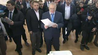 Жириновский проголосовал на выборах