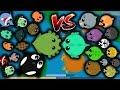 MOPE.IO OCEAN ANIMALS VS LAND ANIMALS! MOPE.IO NEW ANIMAL ORDER RANKED! SEA ANIMALS VS LAND ANIMALS