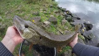 Ловля щуки окуня Рыбалка на спиннинг с берега Простая рыбалка на джиг