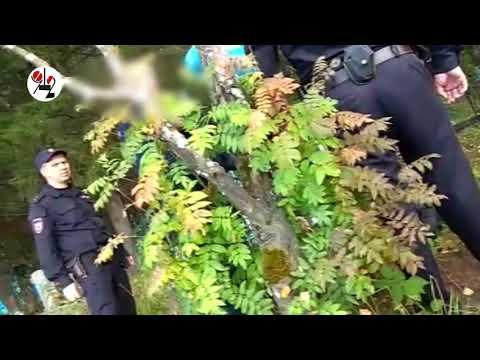 """Задержание подозреваемого в педофилии в Нижних Сергах (телесюжет """"ТАУ"""")"""