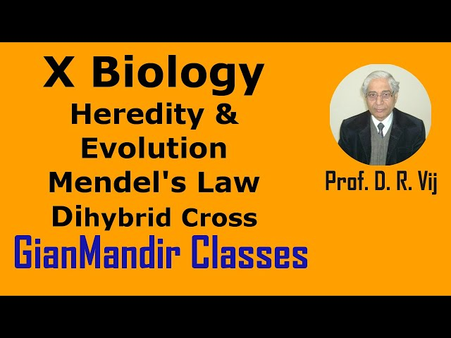 X Biology | Heredity & Evolution | Mendel's Law | Dihybrid Cross by Manjit Ma'am