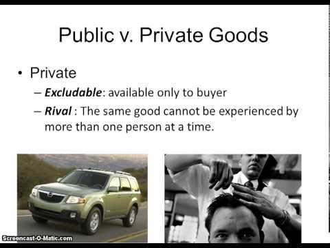 Unit 5 Topic 8: Public & Private Goods