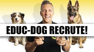 EDUC DOG RECRUTE !!