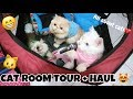 Wiii LUCU BANGET KUCING PUNYA PLAYGROUND   CAT ROOM TOUR   HAUL C CAT FAMILY SO FUNNY   HAPPY