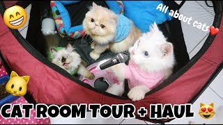 Wiii LUCU BANGET KUCING PUNYA PLAYGROUND - CAT ROOM TOUR + HAUL C CAT FAMILY SO FUNNY & HAPPY ^