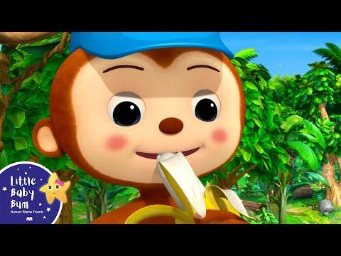 Cantec nou: 5 Little Ducks, Monkeys And Monsters | BRAND NEW! | Nursery Rhymes & Kids Songs | Little Baby Bum