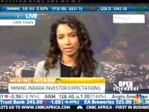 Chamber Of Mines Discusses Mining Indaba 2015 On CNBC Africa