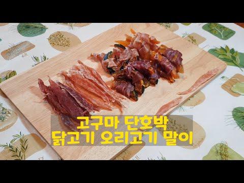 고구마 단호박 닭고기 오리 말이 강아지 수제간식 만들기 (둥이먹방)