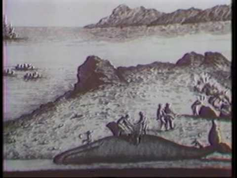 The Basque Whalers of Red Bay