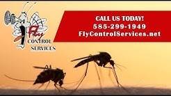 Fly Control Inc. | Honeoye Falls NY Pest Control