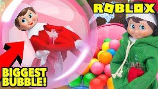Elf auf dem Regal spielt Roblox BubbleGum Simulator Live!