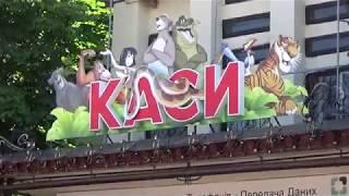 Николаевский зоопарк-лучший зоопарк Украины! Вступление: покупка билетов, ара и шилоклювка