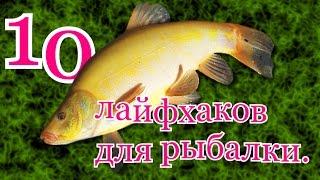 видео для лета и зимы в рыбалку