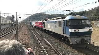 EF210-159+EH800-11 配給列車 JR京都線 島本駅通過 2018/01/18