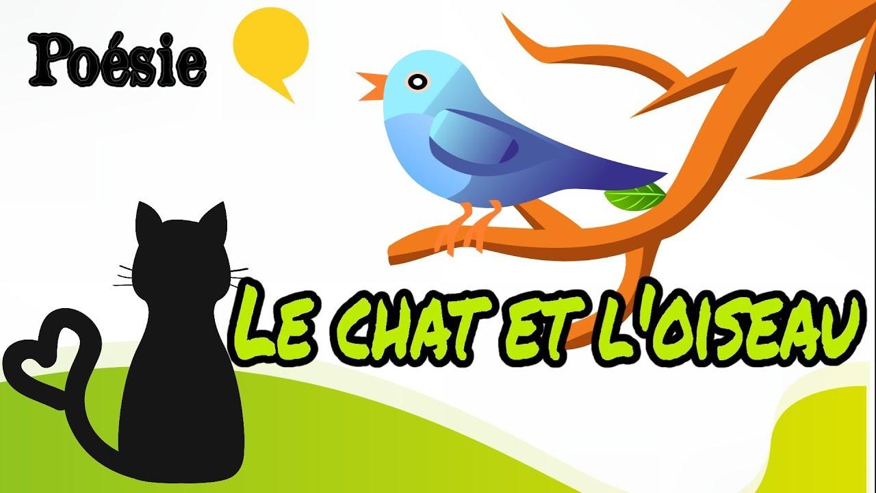 French Poem Le Chat Et Loiseau De Jacques Prévert