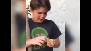 A niño se le muere su mascota!!! - Video de risa