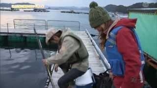 (2013/12月前半放送 starcat ch) 鉄崎幹人さんと未来さんが、名古屋近郊...