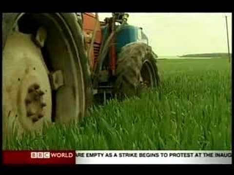 Global Pulse: Biofuel - Another Flawed Policy?