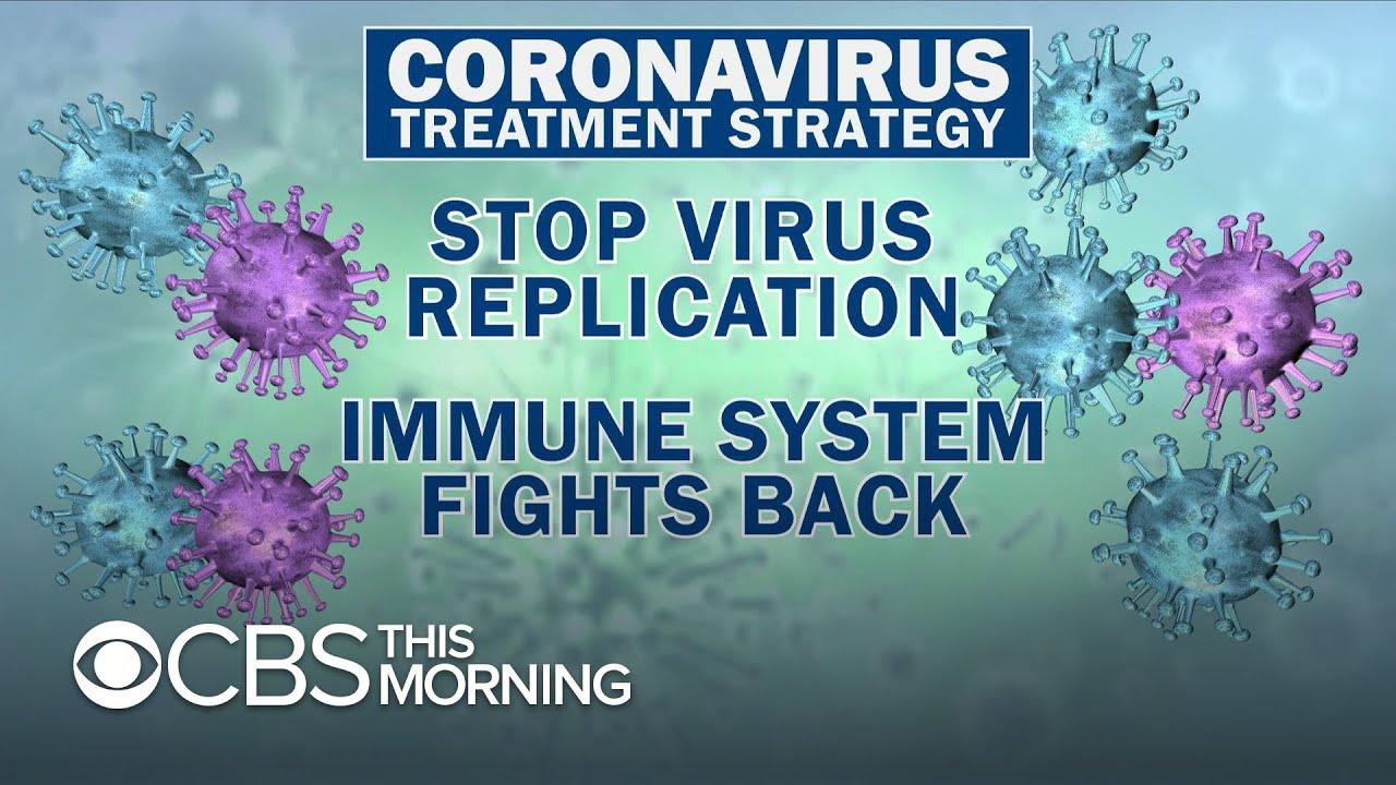 COVID-19 3D model - Life and Leisure on Hum3D  |Coronavirus